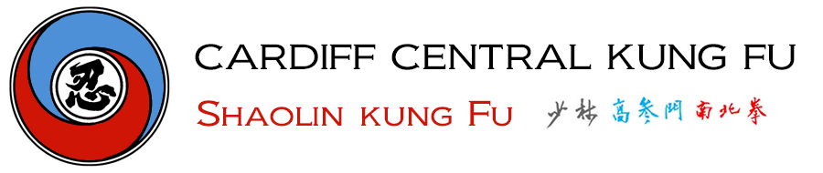 Cardiff Central Kung Fu
